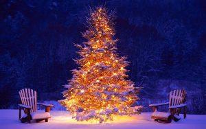 foto-schone-beleuchteten-weihnachtsbaum-draussen-im-schnee-hd-weihnachten-wallpaper